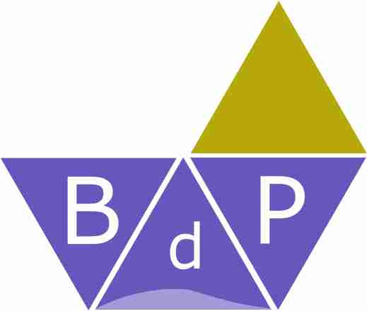 Copisteria bdp-online